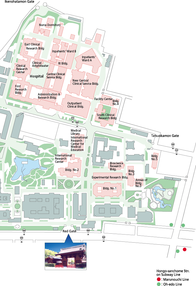 Ku Med Campus Map.Maps Graduate School Of Medicine And Faculty Of Medicine The